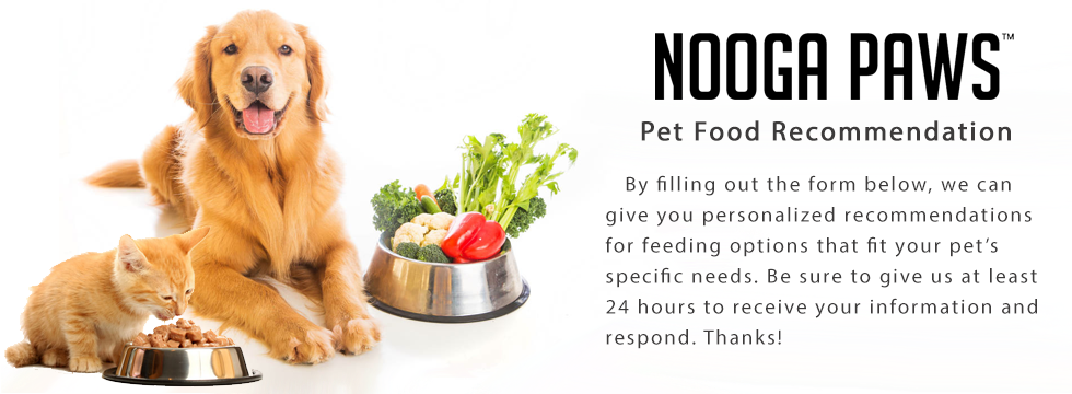 first in show pet foods recommendation break even The topical products we use on ourselves and even our pets could  carbohydrates: key to a  common carbohydrate sources will usually be listed in the first few.